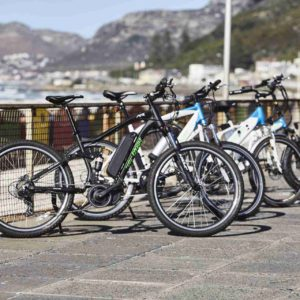 Which electric bike should you buy EzyBike electric bikes in Cape Town